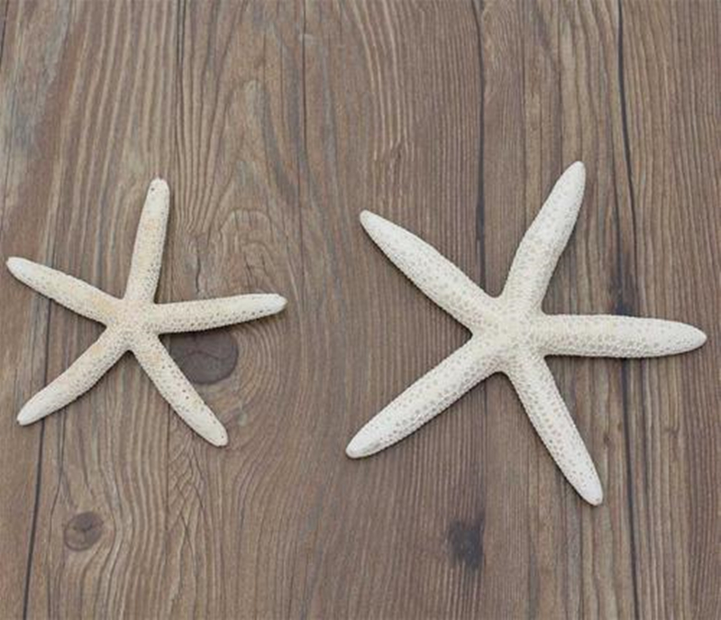 1pc (10-12cm,14-16cm )White Natural Five Finger Sea Star Wedding Decoration Natural Starfish DIY Craft And Home Accessory
