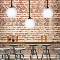 Lamp Cover Hanging Light Lampshade Bulb Retro Ceiling Light Fitting Lamp Guard Wire Cage Lamp Shades Chandelier Modern Glass