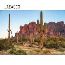 Laeacco Cactus Desert Shrub Mountain Hillside Baby Natural Scenic Photocall Photo Background Photography Backdrop Photo Studio professional 10x20ft hand painted column arch scenic muslin photo backdrop background customized service size photos