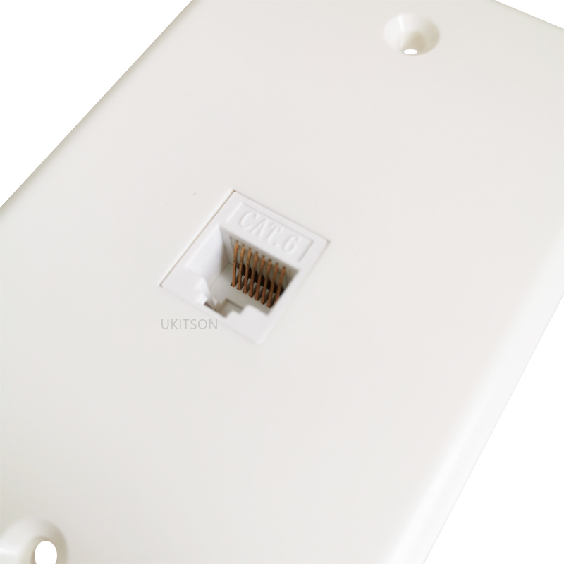 US Type 1 Port Female To Female CAT6 Faceplate pic 6
