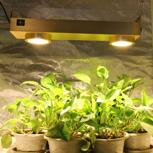 Image 1 - Dimmable Cree CXB3590 COB LED Grow Light Full Spectrum 200W LED Grow Lamp With Timer For Indoor Greenhouse Hydroponic Plant Tent