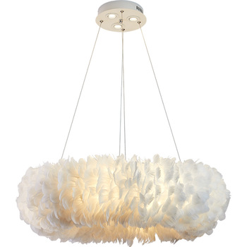 Modern simplicity creativity Hardware lampbody feather Restaurant decorate Chandelier E27 drawing room LED hanging lamp