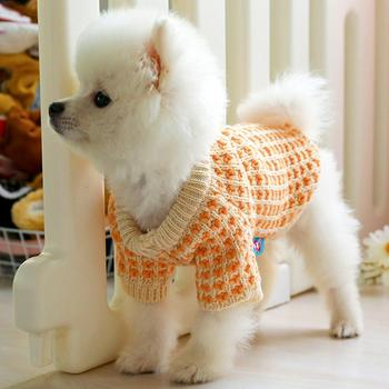 Warm Cat Dog Knitted Sweater Winter Clothes Pets Orange Color Wafer Autumn Puppy Costume