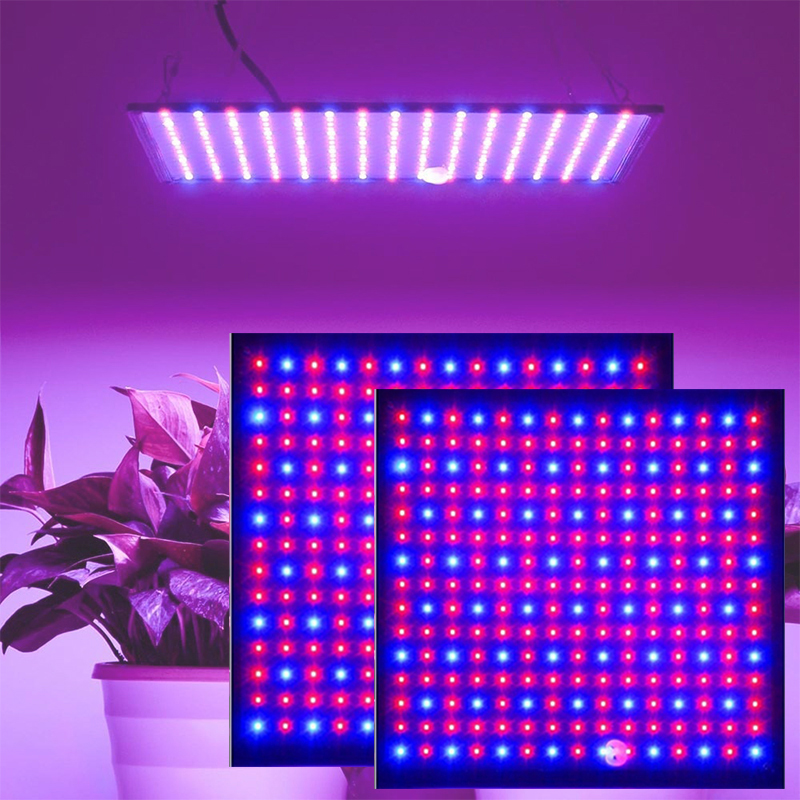 1000W Growth Lamp For Plants Led Grow Light Full Spectrum Phyto Lamp Fitolampy Indoor Herbs Light For Greenhouse Led Grow Tent(China)
