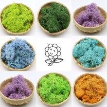 Landscape-Accessories Flower Garden-Decoration Life-Moss-Decor Artificial-Plant Eternal