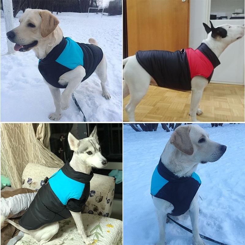 Зимняя непромокаемая одежда для собак-4