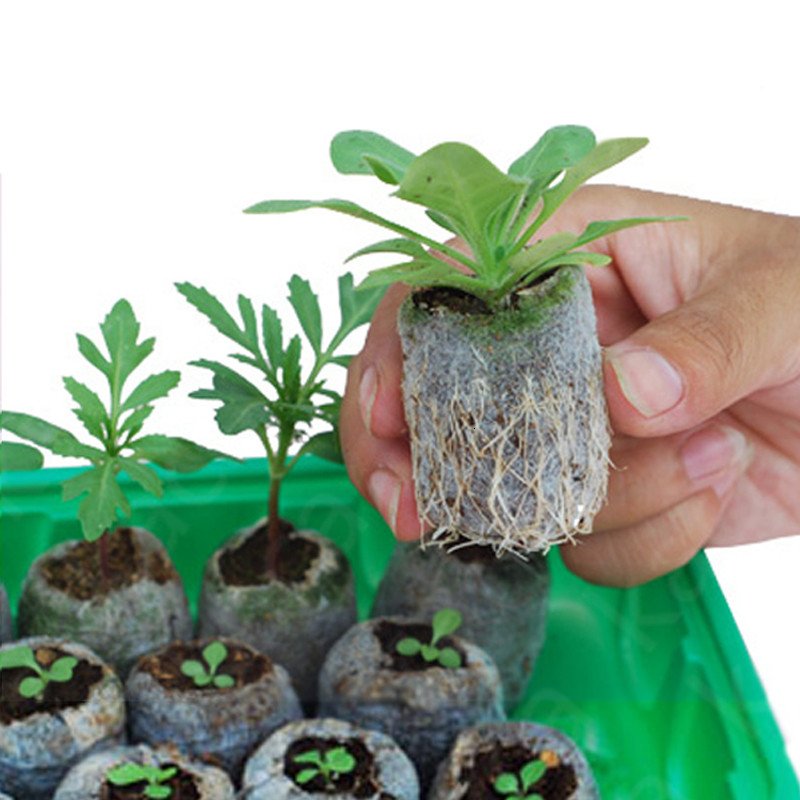 NURSERY Peat Pellets Jiffy Plant Seedling Starting Soil Block Home Transplanting Plugs for home Garden 30mm image