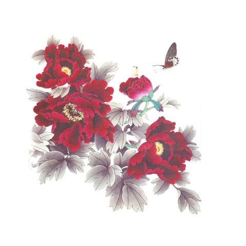temporaria peonia ameixa flor de lotus lobo