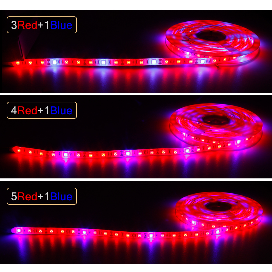 12V Full Spectrum Led Grow Light Strip Red +Blue Growing Lamp Waterproof IP65/IP20 For Hydroponics Flowers Plants Vegetables