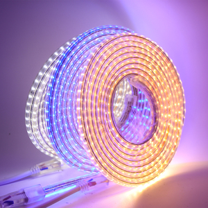 Image 3 - 220V LED Light Strip 3014 SMD Waterproof 120LEDs/m Outdoor Rope LED Strip Light White/Warm White/Blue EU Power Switch plug