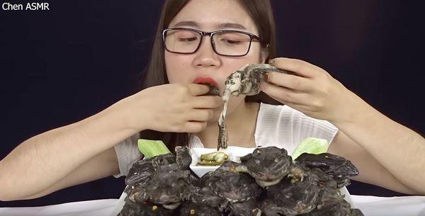 血腥!越南 Youtuber  ASMR 主播活吃青蛙! asmr资讯