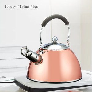 3L High quality whistle teapot rust stainless steel gas electric stove kettle water teapot camping portable heating teapot