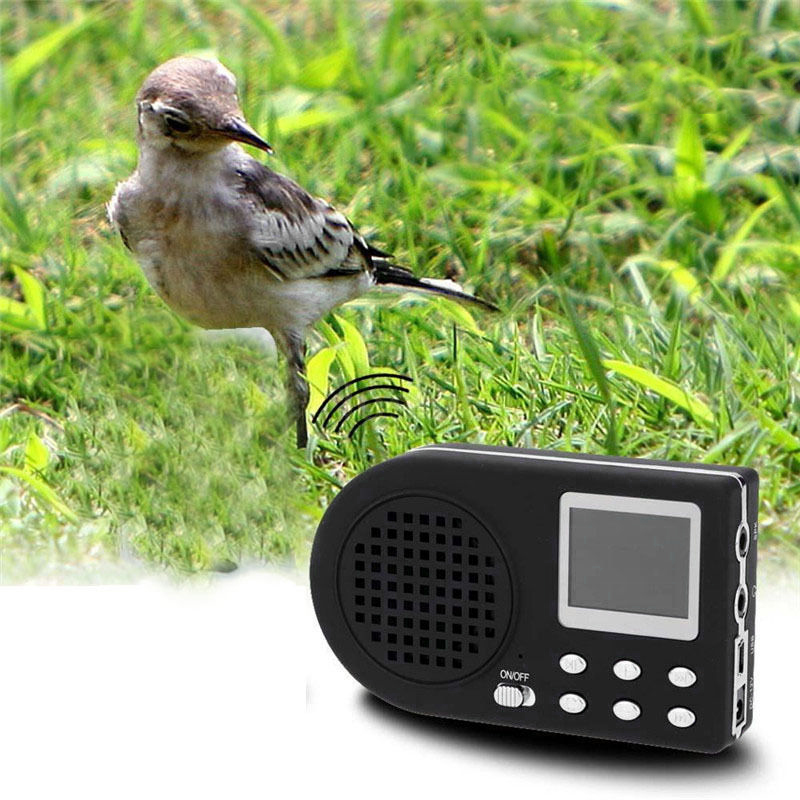 Decoy Bird Caller Mp3 Player Bird Sound Loudspeaker Eu Plug