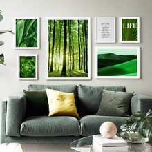 Desert Forest Tropical Plant Leaf Wall Art Print Canvas Painting Nordic Posters And Prints Pictures For Living Room