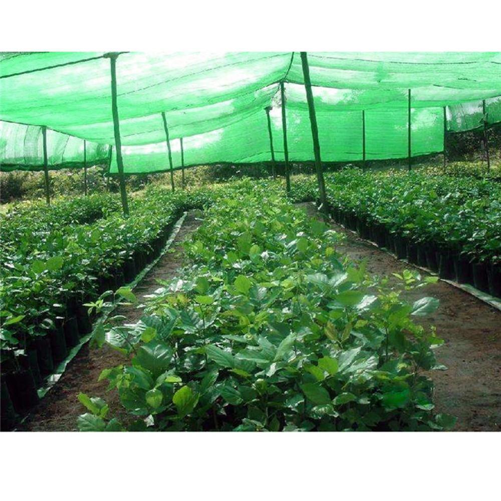 3 Pin 8x10M Greenhouse Sun Protection Sunshade Fruit Protect Cover Cloth Barn Umbrella Covered Garden Terrace Anti Bird Net