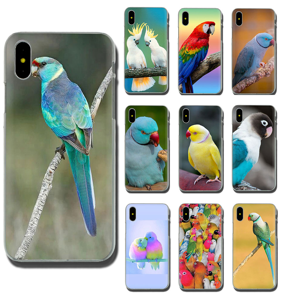 Black Parrot Case for Apple iPhone 6/6S