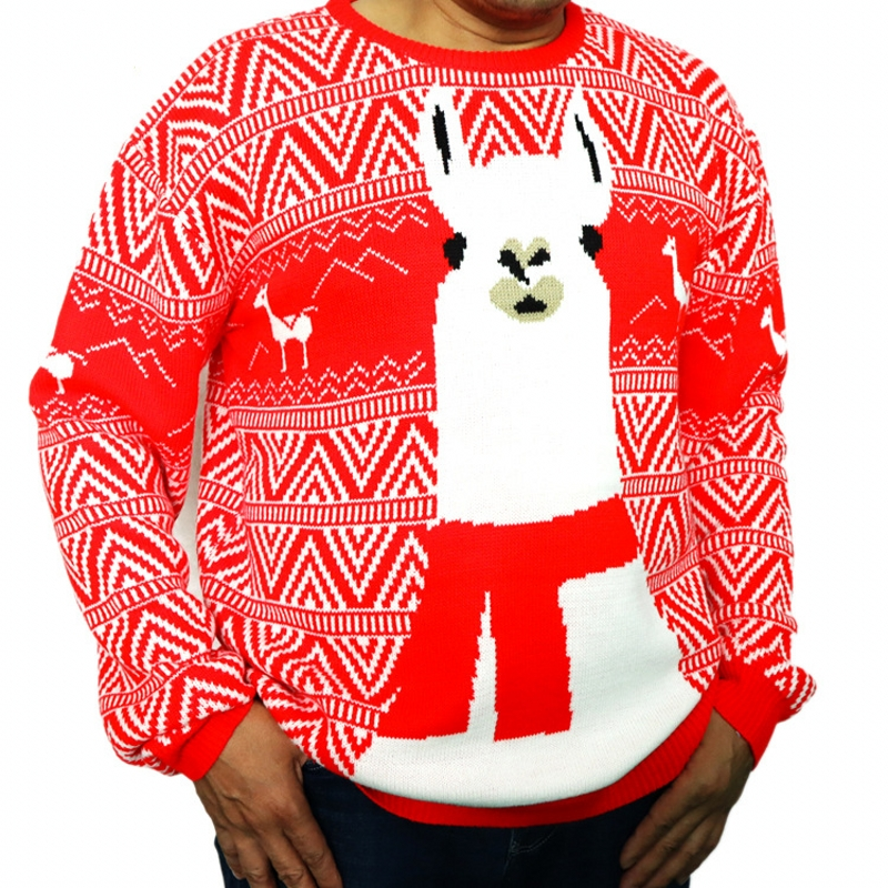 Ugly Sweater Men Red Christmas Sweater Deer O-neck Loose Winter 2019 Long Sleeve Pullover Knitted Jumper M90694
