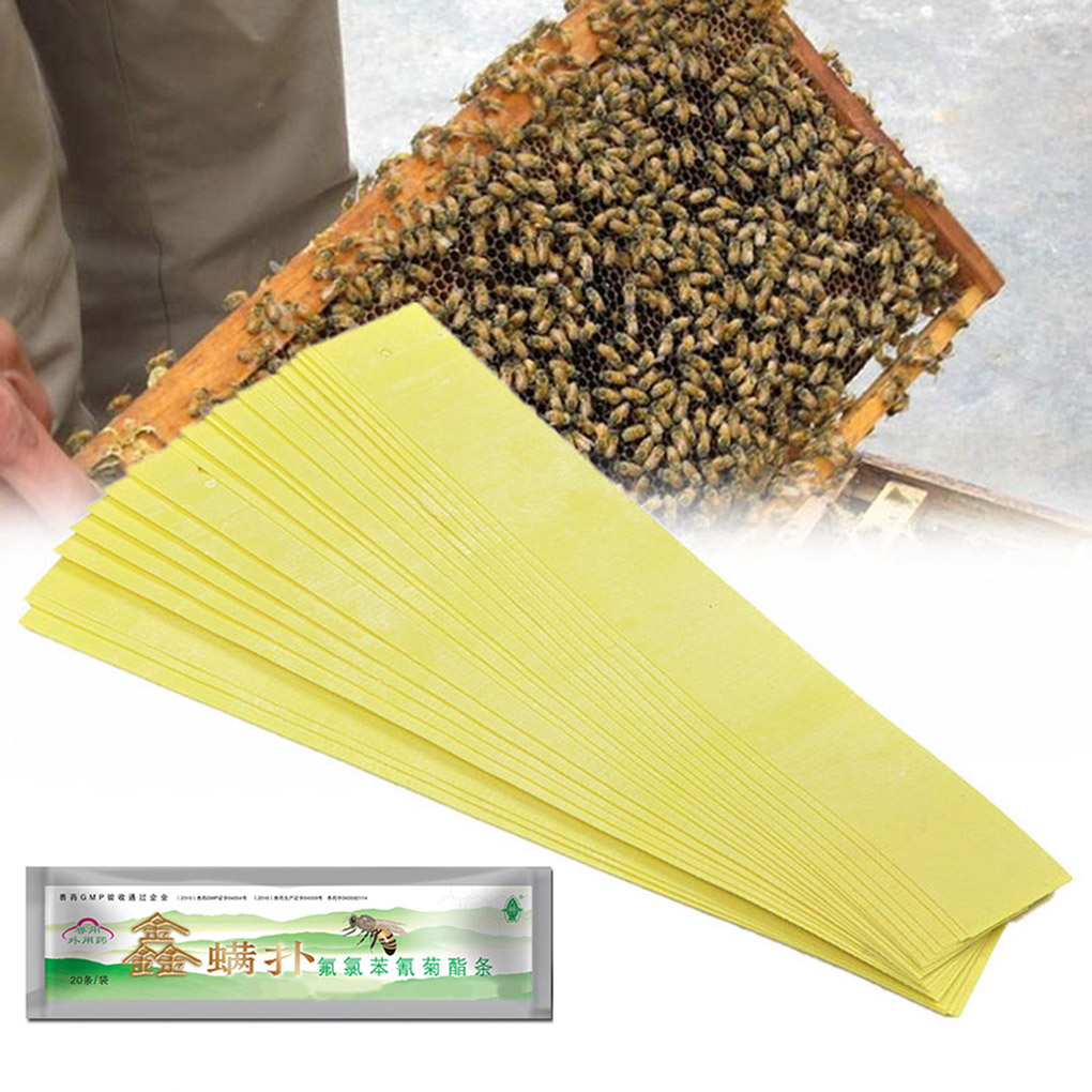 20pcs/lot Professional Acaricide Mite Strip Against Varroa Mite Killer Pest Control Beekeeping Fluvalinate Strip