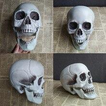 Halloween crânio artificial cabeça modelo crânio osso assustador plástico crânio horror skelet festa barra ornamento cor aleatória
