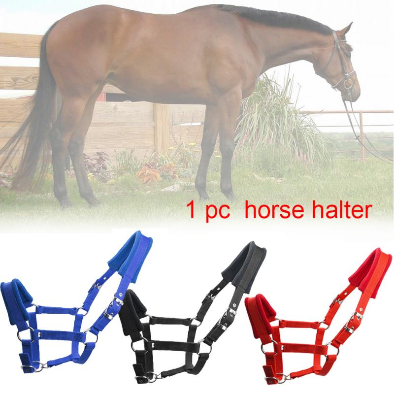 Double Layered Protective Horse Halter Fleece Padded Detachable Adjustable Strap Multiple Sizes Outdoor Sports Riding Equipment