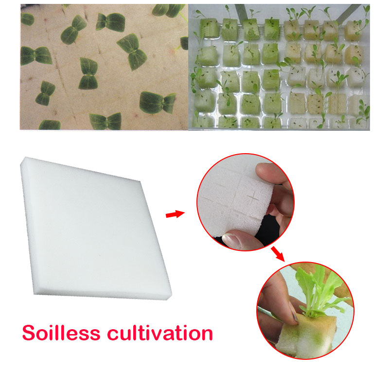 10set Seedling Sponge Agriculture Vegetable Cultivation Artificial Breeding Balcony Planting Soilless Cultured Durable planting