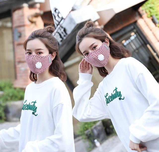 Cute Cotton Plaid Mouth Masks Breath Valve Anti Dust 5-Layer Washable Proof Flu Mouth Mask Windproof Replaceable Filter