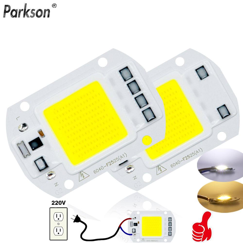 COB LED Lamp Chip 220V 3W 5W 7W 9W 10W 20W 30W 50W Smart IC No Driver Ampoule LED Bulb Flood Light Spotlight Diy Lighting Light