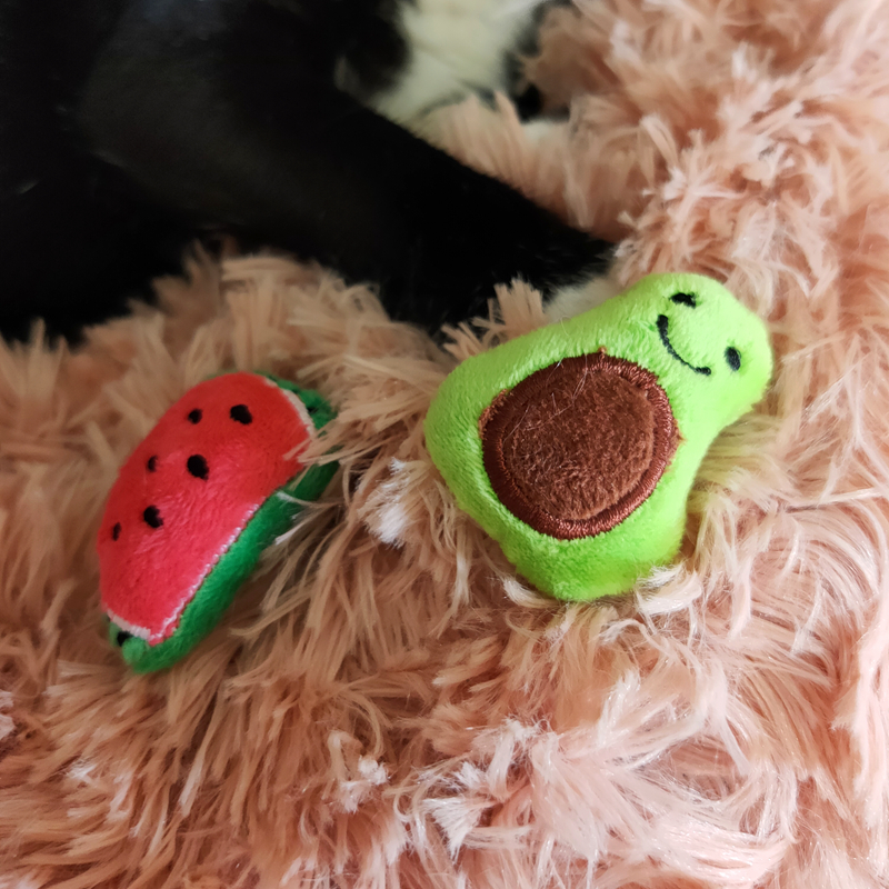 [MPK Catnip Toy] Buy any 3 items get 30% off! New 2019 Cat Face Design Cat Toy, Catnip Cookie Cat pillow 29