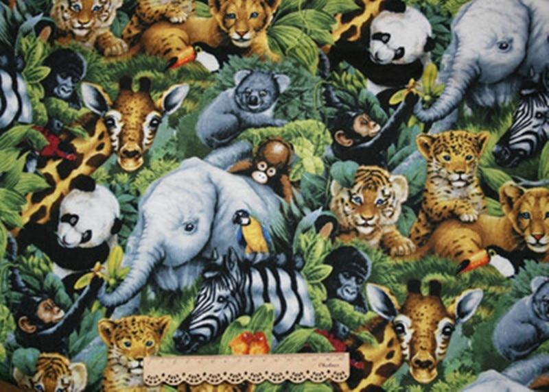 定位动物图