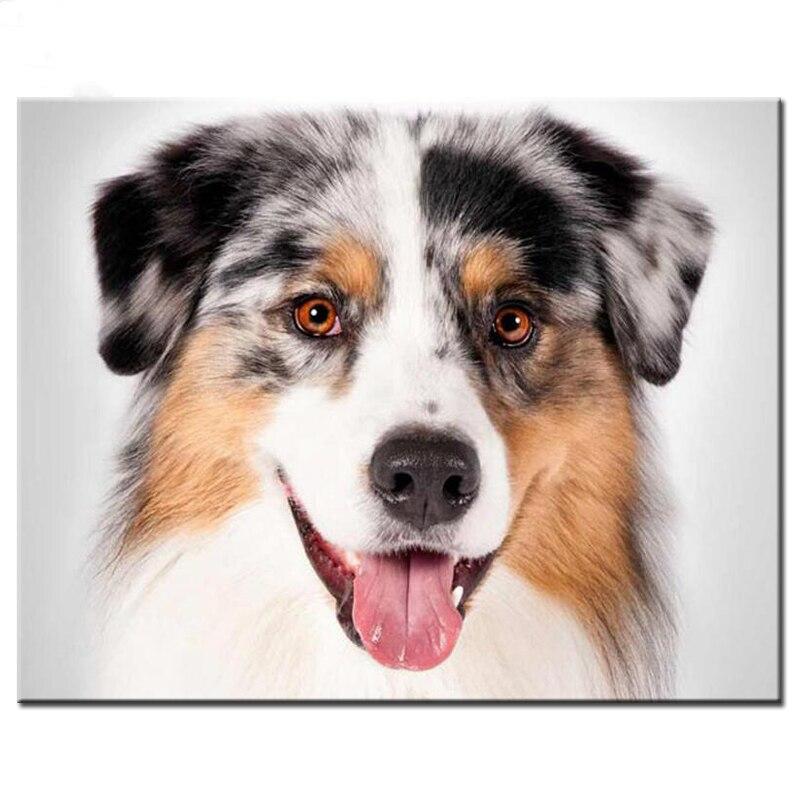 DIY,Diamond Embroidery Australian Shepherd dog 5D diy Diamond Painting animal cute pet Full,Cross Stitch Mosaic,Rhinestones art