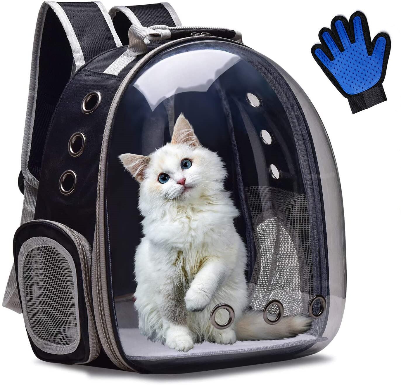 Gato portador mochila respirável transparente filhote de cachorro cachorro bolha saco espaço cápsula transporte do animal estimação com escova livre luva nova