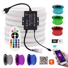 Tira de neón LED RGB con Control WiFi y Control remoto, 1500W, impermeable, 110V, EE. UU., 220V, UE, AU, Reino Unido, 1-100m