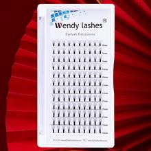 WENDYLASHES Premade Fans 3D/5D/6D/10D Volume Lashes Faux Mink Eyelashes Russian Volume Eyelash Extensions Handmade Premade Fans недорого
