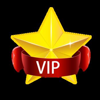 VIP link ( book + pen + 5 refills + silicone accessory )