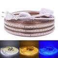 Светодиодные ленты ЕС 220 240V Водонепроницаемый IP67 открытый веревка белый/теплый белый/синий светодиод SMD 3014 120 светодиодов/m светодиодный све...
