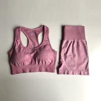 0309Pinnk Bra Shorts
