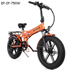 EP-2P-750W Powerful Motor Electric bike 48V12.8A electric Bicycle 45KM/H 7Speeds Fat Tire bike 20*4.0inch Mountain Snow ebike