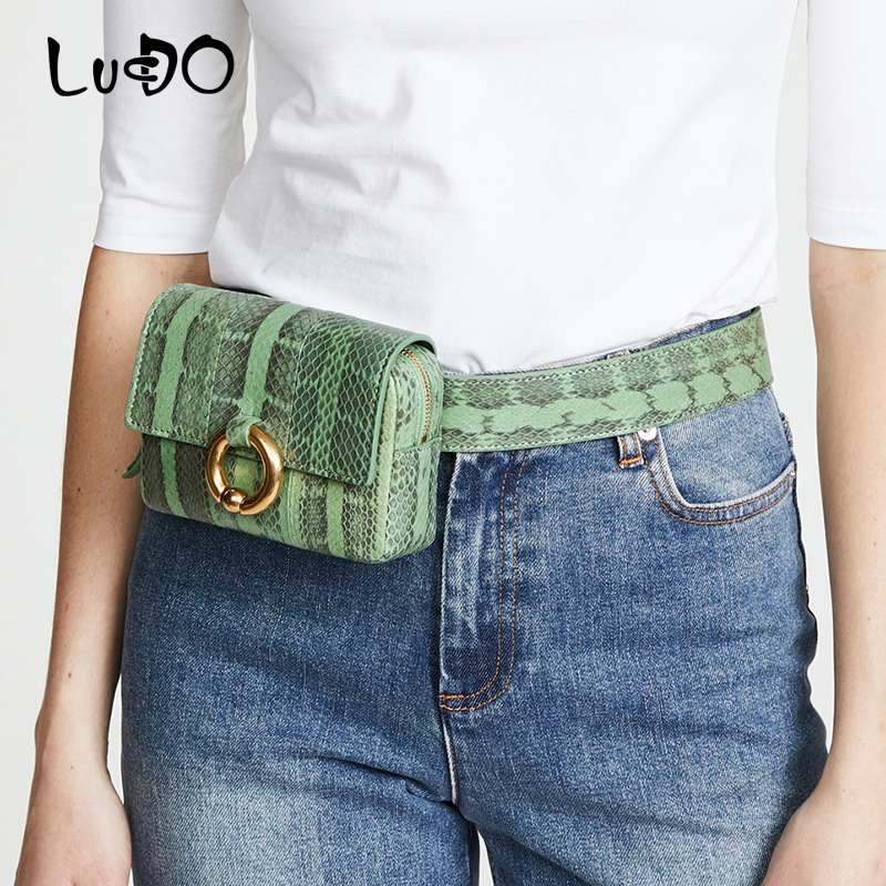 Fashion Serpentine Waist Bags For Women Luxury Brand Designer Python Simple Belt Bag Heuptas Waist Packs Small Leather Chest Bag