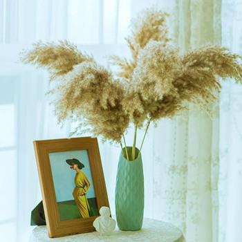 Prawdziwe suszone kwiaty pampas trawa duży wystrój naturalne rośliny ślubne bukiety kwiatowe z wazon plastikowy do wystroju domu dobrej jakości tanie i dobre opinie LC19093002 HYBRID Kwiat + wazon Bukiet kwiatów Ślub Rattan Natural pampas grass bouquet Raw Color Natural plants 30-40cm