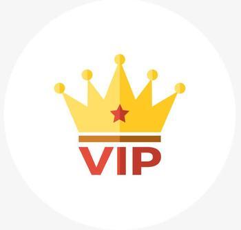 VIP w najszybszy sposób aby zrobić płatności tanie i dobre opinie wzdom CN (pochodzenie) 5655