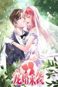 宠婚来袭[更新至20]