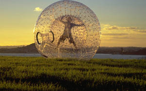 Ball Hamster Inflatable-Ball-Zorbing Human Pvc1.0mm Hot-Sale