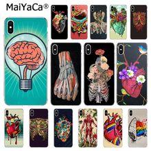 MaiYaCa Medical Human Organs Brain Meridian Kidney Art Phone case For iphone 11 Pro 11Pro Max 6S 6plus 7 8Plus X Xs MAX 5 5S XR