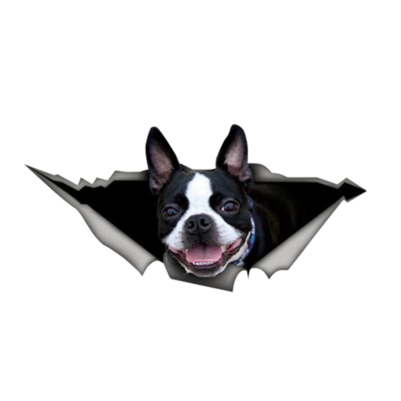 Personality Car Stickers 3D Boston Terrier Dog Pet Animal Decal Motorcycle Car Window Accessories PVC 13cm X 6cm