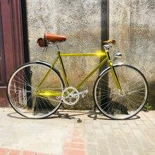 armazón bicicleta RETRO VINTAGE