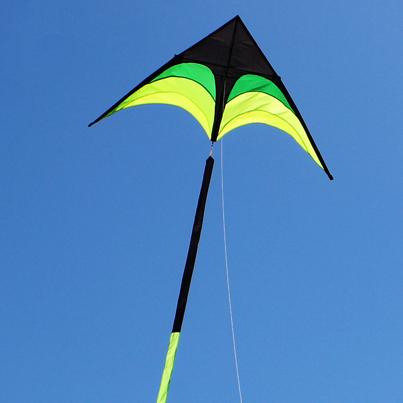 Free Shipping Large Delta Kite For Adults Kite Nylon Toys Fly Kites Children Kite Reel Weifang Kite Factory Ikite Eagle Bird New