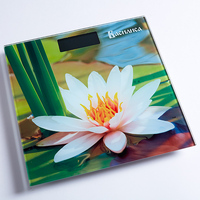 Bathroom Scales VASILISA 0R 00005501 Home & Garden Household Merchandises Bathroom Products electronic floor scales