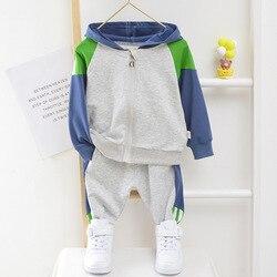 Criança menino com capuz roupas 1 2 3 4 5 anos de algodão bebê menina esporte terno menino infantil manga longa 1-5 anos primavera outono treino