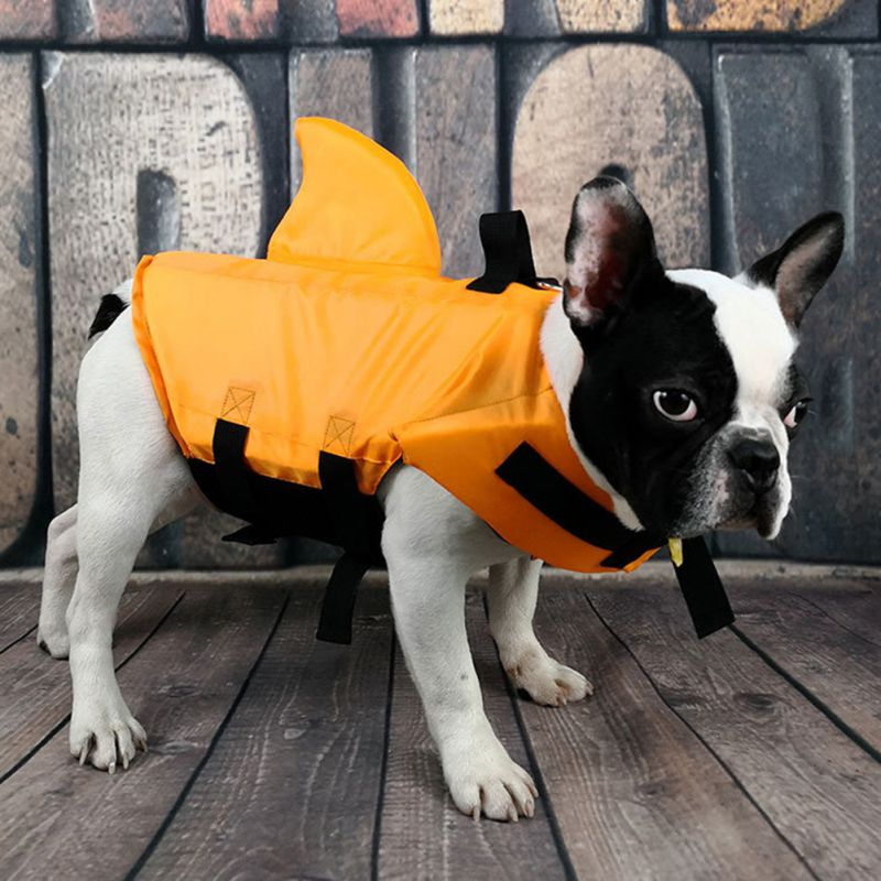 french bulldog shark life jacket
