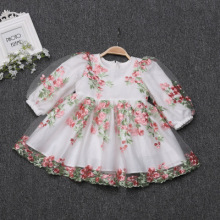 Baby Girl Dress Long Sleeve Newborn Autumn Dress 1st Birthday Dress Pi
